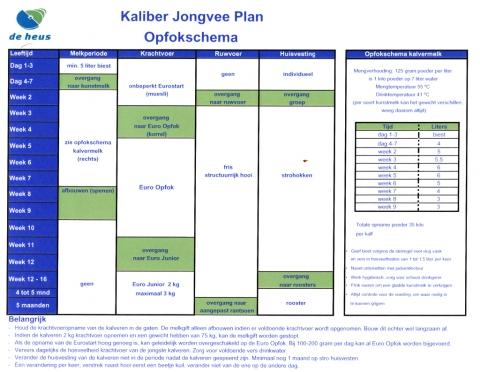 Kaliber Jongvee Plan Opfokschema